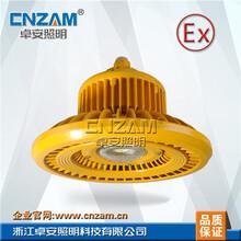 ZBD101-III100W--150WLED免维护防爆灯150W圆形集成防爆灯