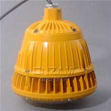 温州厂家直销LED免维护防爆灯管吊式防爆灯吸顶式LED防爆灯20W--40W