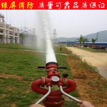 直流水柱水雾两用灭火消防炮消防舰艇油田专用消防设备