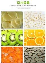 廣東生產廠家檸檬橙子切片加工全自動果蔬切片機圖片