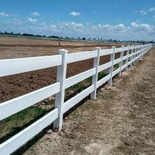 pvc塑钢马场护栏国际赛马场专用防护效果好外观精致图片