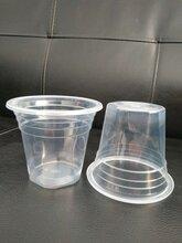 山东厂家直销一次性透明塑料杯/果冻杯/圣代杯/酱料杯图片