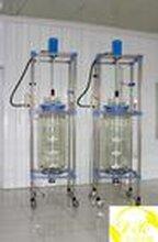 南昌100L双层玻璃反应釜乾正仪器供应现货发售,价格低质量优。