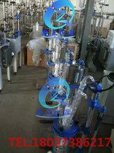 1L双层玻璃反应釜实验室用夹层玻璃反应器乾正仪器生产