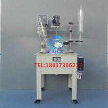 上海双层玻璃反应釜100LSF-100L图片
