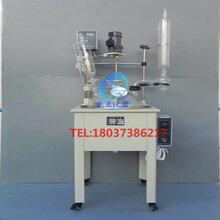 上海双层玻璃反应釜100LSF-100L