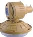 薄利供应DBAP01-W系列防爆无极灯