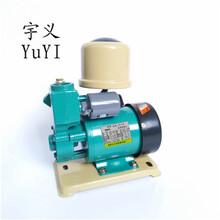 威海新款数码250W自吸增压泵.全自动家用自吸泵