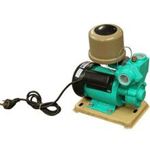 WZB-B款全自动冷热水自吸泵