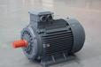 供應泉州YX3系列高效率三相異步電動機