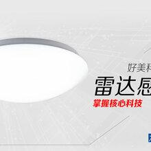 雷达感应吸顶灯,雷达感应天花灯,LED双亮吸顶灯,18W移动感应LED吸顶灯,生产厂家图片