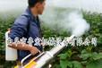 大棚用弥雾机果树弥雾机设备电启动弥雾机弥雾机型号