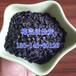 上海椰壳活性炭用于循环水过滤1-2mm椰壳净水炭价格
