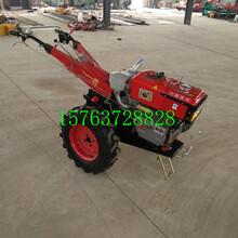 上海閔行小型手扶拖拉機12馬力手扶拖拉機手扶拖拉機報價圖片