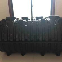 安徽塑料三格化粪池厂家图片