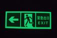 長期供應發光夜光安全出口指示牌緊急出口標識消防疏散標識