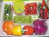 众天瓜果蔬菜专业合作社