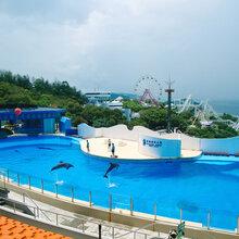港澳4天3晚香港海洋公园538元全含