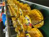 GF9035LED泛光灯35WLED三防灯厂家