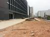 深圳园林绿化工程