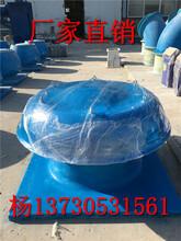 玻璃钢风机的价格BDW-87-3型低噪声屋顶风机图片