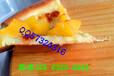 专注炸鸡汉堡奶茶培训甘肃手握披萨汉堡鸡排培训