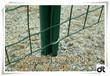 方孔铁丝网围栏#信阳圈养鸡场用的方孔铁丝网围栏
