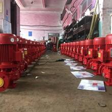 山東廠家卓全泵業消防泵xbd3.8/20G-L15KW噴淋泵圖片