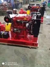 柴油機消防泵組XBC12.0/50G-W廠家圖片