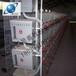 河南生产新型鸡笼厂家地址1河南优质鸡笼的最新价格1河南银星1