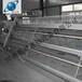 河南自动喂料机厂家直销1河南生产喂料机的厂家1河南银星1