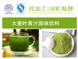 大麦青汁固体饮品OEM辣木叶大麦青汁粉代加工贴牌制
