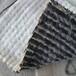 山東泰安廠家直供人工湖專用膨潤土防水毯5kg價格低質量好
