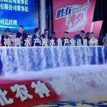 广州爆款干冰机注水冒烟启动台倒金沙启动台