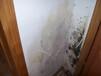 補漏衛生間防水補漏膠,深圳坪地衛生間防水補漏方案