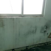 惠州仲愷專業防水補漏,房屋防水