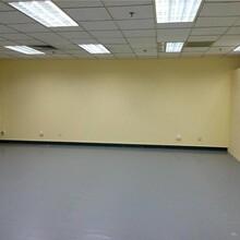 深圳大鵬學校地膠板方案圖片
