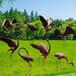 仿真玻璃钢雕塑仿真动物雕塑仿真鹤雕塑惊奇公园动物园树脂摆件