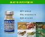 虾塘里泼洒em原液可以预防青虾生病吗