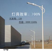 大功率LED路灯头50W小金豆-节能环保-厂家直供-福光