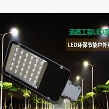 沧州福光新农村路灯头,30W小金豆路灯头,新农村路灯专用图片