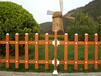 广东深圳草坪护栏厂家,PVC护栏,塑钢护栏