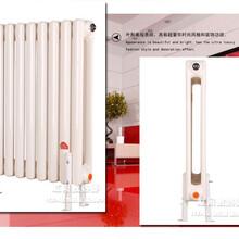 厂家批发qfgz216双圆柱钢制散热器QFGZ-216钢制二柱型暖气片