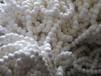 润淋厂家纤维球滤料规格全滤水效果好价格低是理想的净水滤料