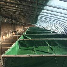 定做防漏水篷布鱼池pvc帆布水池图片可移动帆布鱼池定做绿色储水池厂家图片