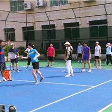 上海网球培训,上海网球教练