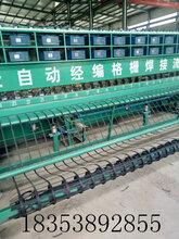 广东东莞莞城区工地施工材料厂家,土工格栅专供