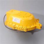 防爆泛光灯BFC8120图片