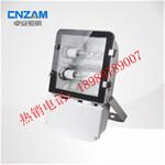 节能型热启动泛光灯NFC9131图片