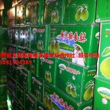 陜西庫爾勒香梨產地批發,冷庫紅香酥梨產地價格圖片